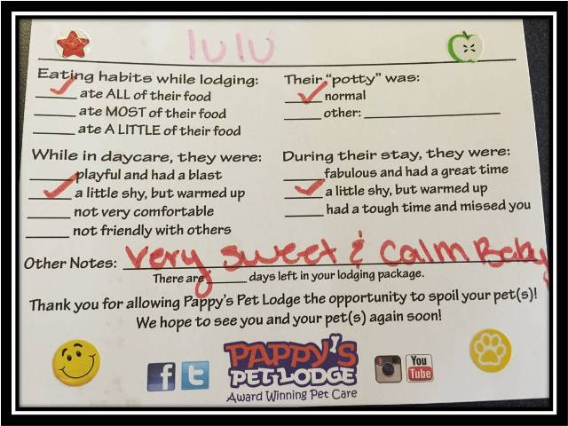 pappy pet lodge report card